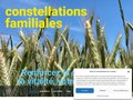 screenshot http://www.constellations-familiales.fr Association corrélations - constellations familial
