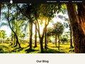 screenshot http://www.greenwaco.be Green waco : utilitaires électriques !