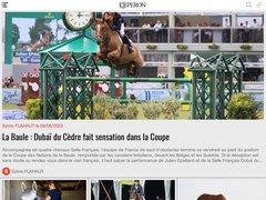 actualité du marché de l'immobilier sur leperon.fr