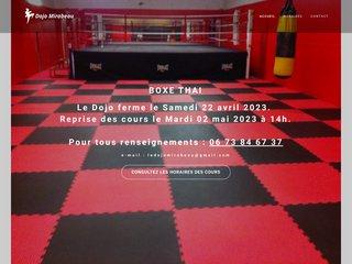 screenshot http://dojo.mirabeau.free.fr/ Dojo mirabeau aix  aikido et arts martiaux