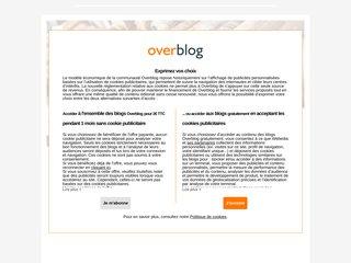 screenshot http://gdelaage.over-blog.com Guillaume delaage - thot hermès