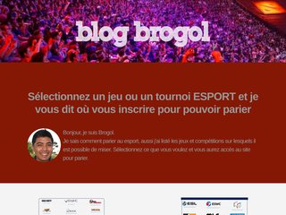 screenshot http://www.brogol.fr Brogol's blog
