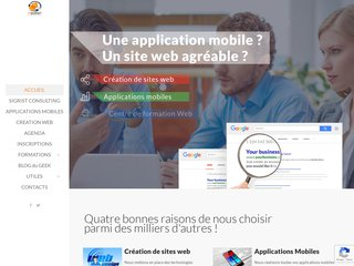 screenshot http://www.francis-sigrist.biz Francis sigrist consultants