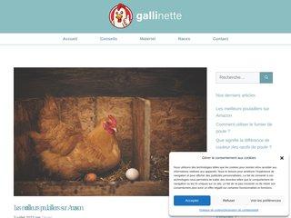 screenshot http://www.gallinette.net Gallinette: elevage d'animaux de basse-cour
