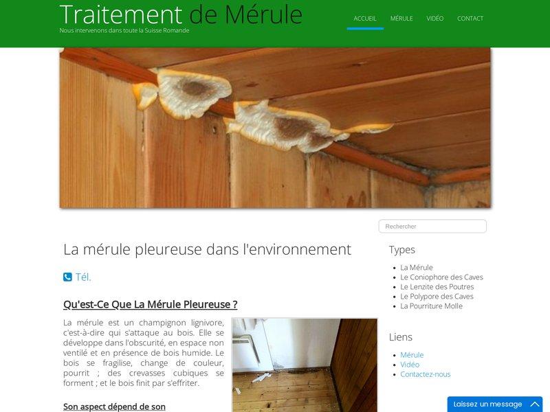 Sateb SARL Suisse | Rénovation de résidences et bâtiments - Traitement des matériaux (bois, charpentes, métal, pierre),Rénovation des bâtiments(sablage, peinture, vitrerie), Peintu