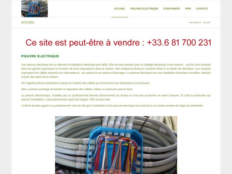 Pieuvre.fr est fabriquant de Pieuvre Electrique depuis plus de 20 ans. Nous expédions votre Pieuvre Electrique dans toute la France en 48h.